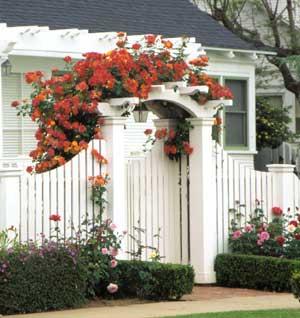Phong thủy cho cổng nhà